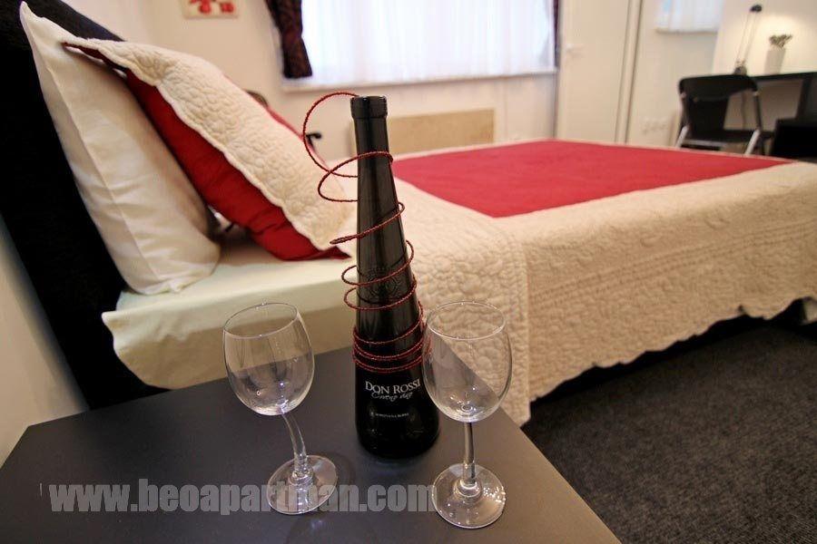 KOLARAC apartman Beograd, vino