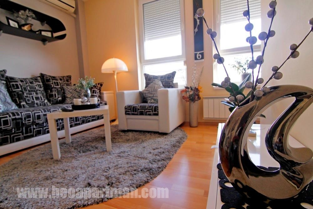 LION apartment Belgrade, black and white  living room