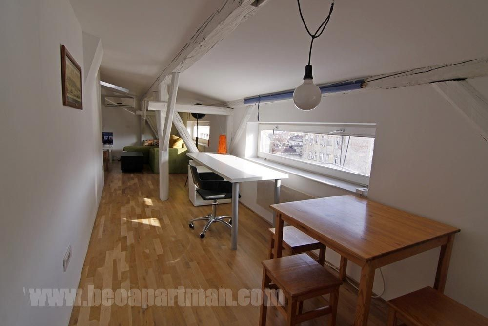 LOFT apartment Belgrade center, Cara Urosa