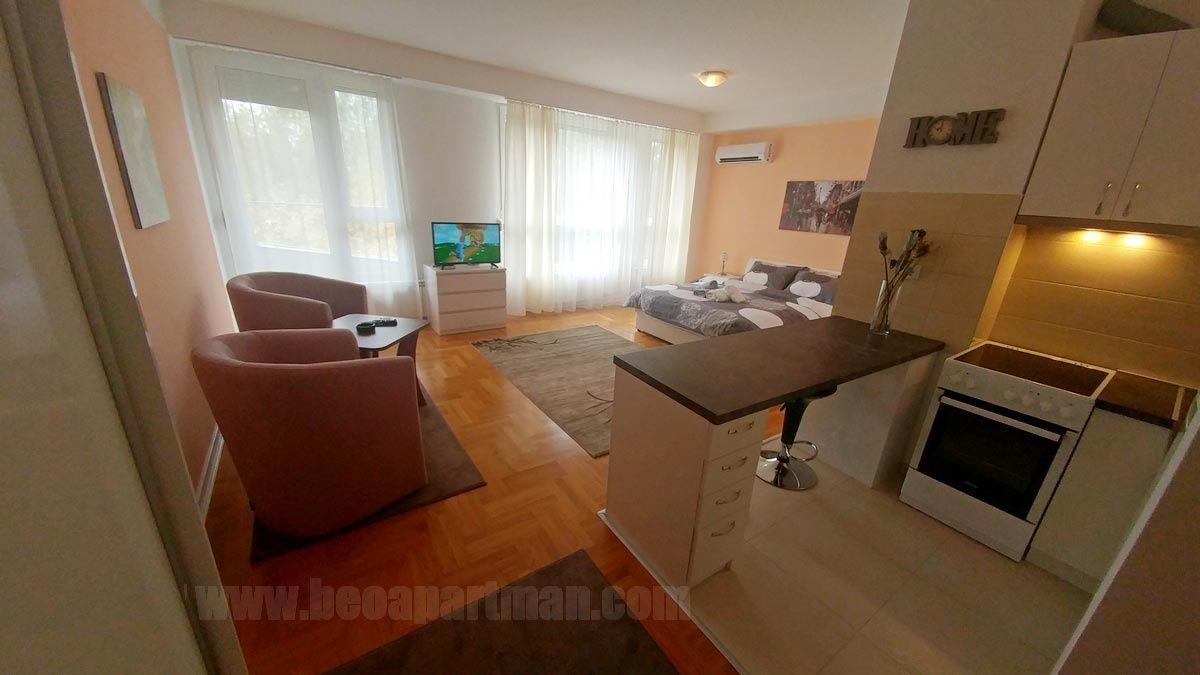 Europe Studio Apartment With Balcony New Belgrade