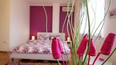 ATINA apartman Beograd. cveće