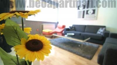 LOTUS apartment Belgrade, sunflower in living room