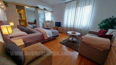 Deluxe apartment in Belgrade centre, near Parliament