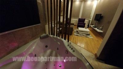 JACUZZI apartman Beograd, dnevna soba