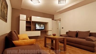 PIONIR apartman Beograd, dnevni boravak i kuhinja